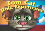 Doświadczenie z kotem