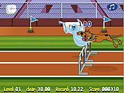 Scooby Doo: bieg przez płotki