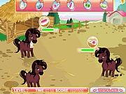 Darmowa gra w mycie konia online