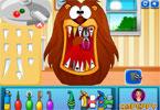 Zwierzęta u dentysty