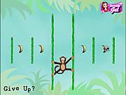 Gra Małpki w dżungli online