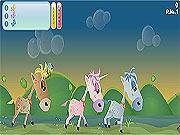 Mistrzostwa: Wyścig koni