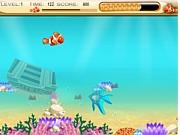 Nemo szuka pożywienia