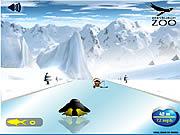 Super Pingwiny: wyścig online