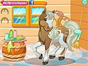 Gra Barbie opieka nad końmi