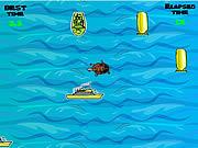 Pływanie żółwiem po oceanie