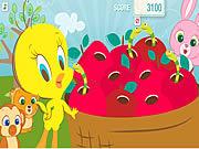 Oczyszczanie jabłek z robaków