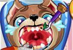 Szczeniaczki u dentysty