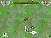 Skoki jeździeckie zawody