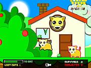 Gra Schronisko dla kotów